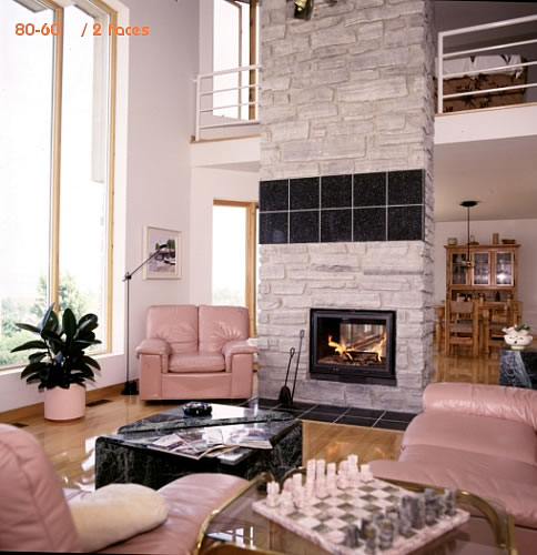 contemporary-fireplace-insert-4x